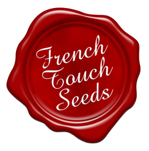 french-touch-500x5007