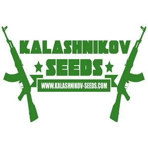 kalashnikov-seeds_download_cat_thumb_cdc6763e-d7b6-41ed-8357-11f59cdd6127_1024x1024113