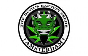 large-the-devils-harvest-seeds-logo51